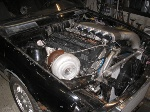 BMW-316-Turbo-IC_05.jpg